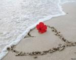 отношения, свобода и любовь